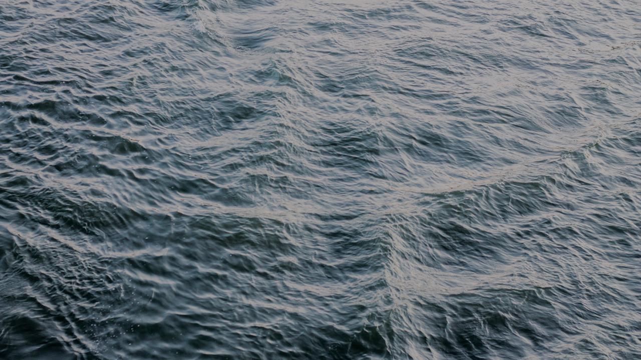 Rising Tide: Week 1